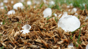 Picture of hail for blog on hail damage insurance